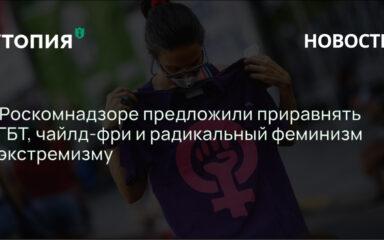 В комиссии при Роскомнадзоре предложили признать экстремистскими движения чайлд-фри, радикального феминизма, фурри и ЛГБТ.